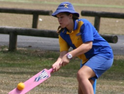 Cricket Gala Day